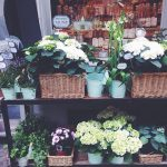 Compltement accro aux devantures des petites boutiques la fille belgiumhellip