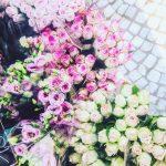 Paris sans fleurs nest pas Paris Vivi sans photos dehellip