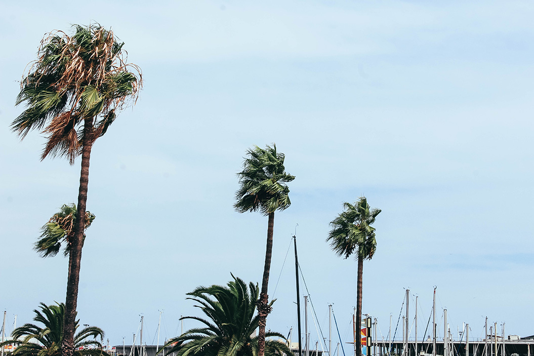 barcelona-city-guide-mademoisellevi-23
