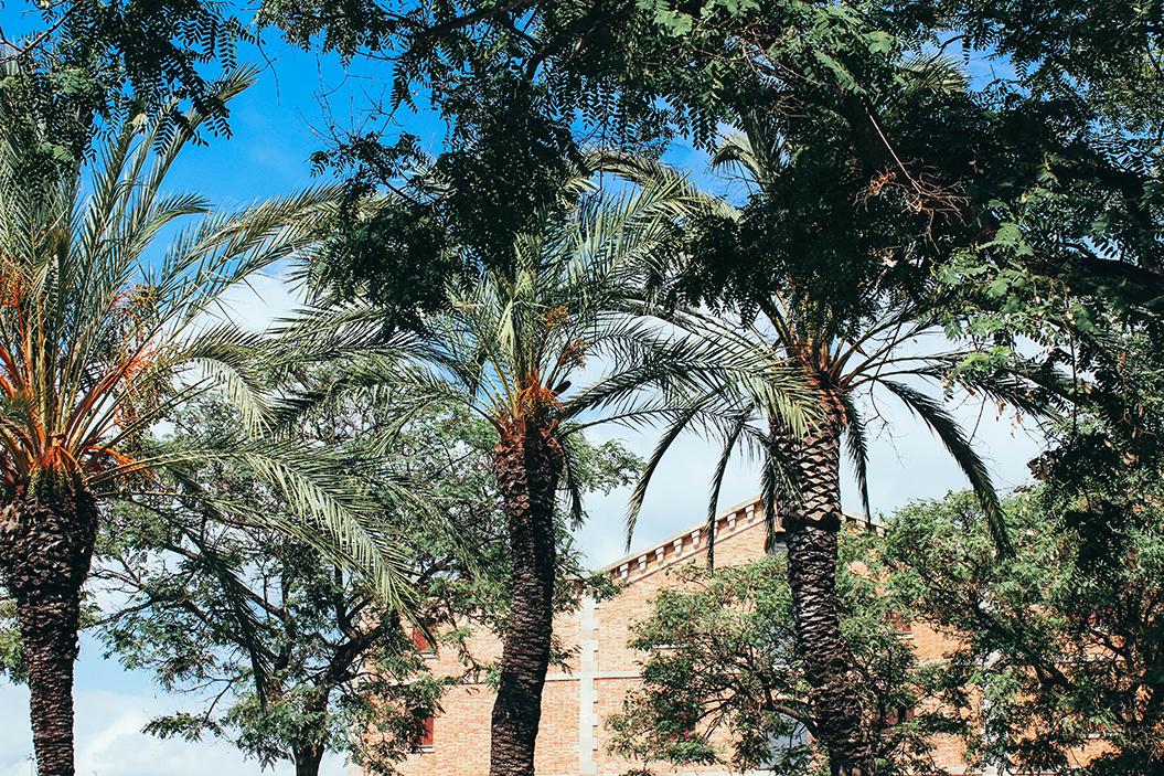 barcelona-city-guide-mademoisellevi-5